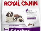 Корм Royal Canin Giant Starter с доставкой