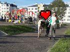 Работник в городской прокат на Пони