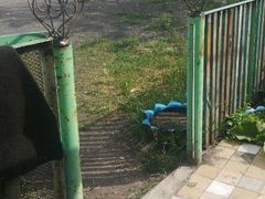 Подгоршочники на забор