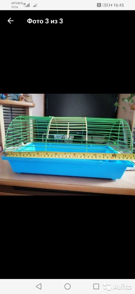 Cage for rodents  89621631169 buy 6