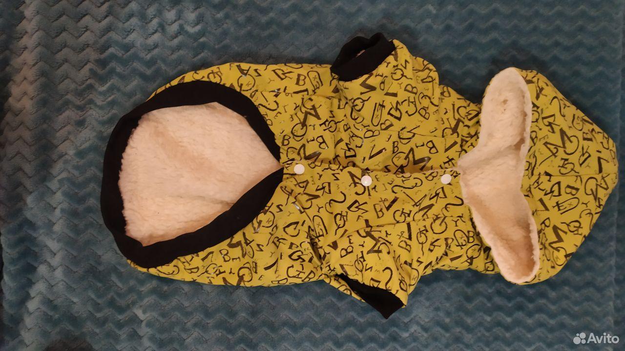 Одежда для собак  89042131306 купить 2